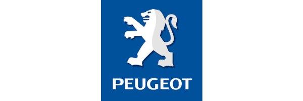 Peugeot Partner Tepee, Baujahr 2008 - 2018